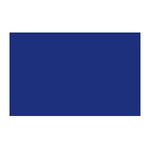 Les nuits du cirques